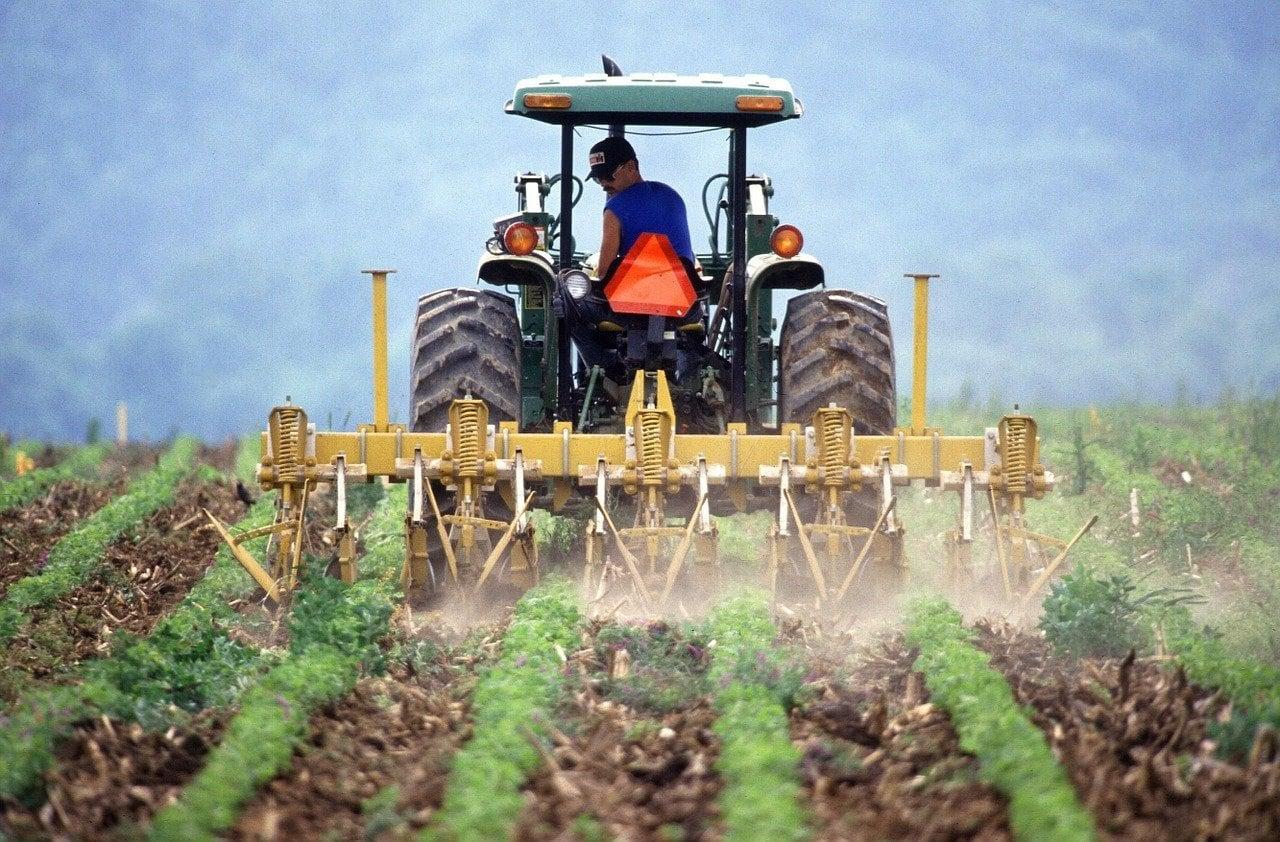 Agroteknologi - Jurusan Favorit di UNPAD Bandung dan Paling Banyak Peminat Universitas Padjadjaran