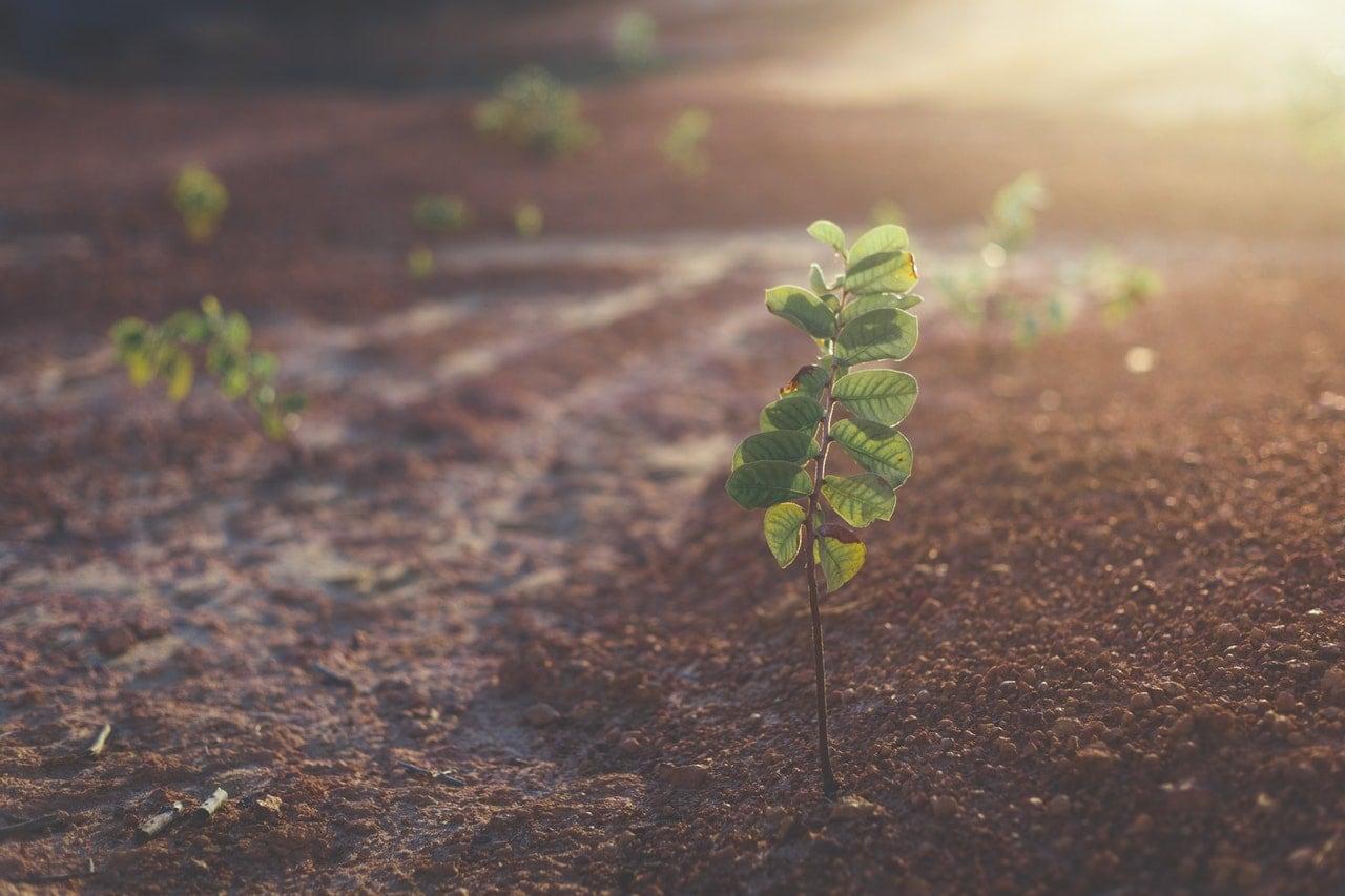 Manajemen Sumberdaya Lahan - Jurusan Favorit di IPB Bogor dan Paling Banyak Peminat Institut Pertanian Bogor