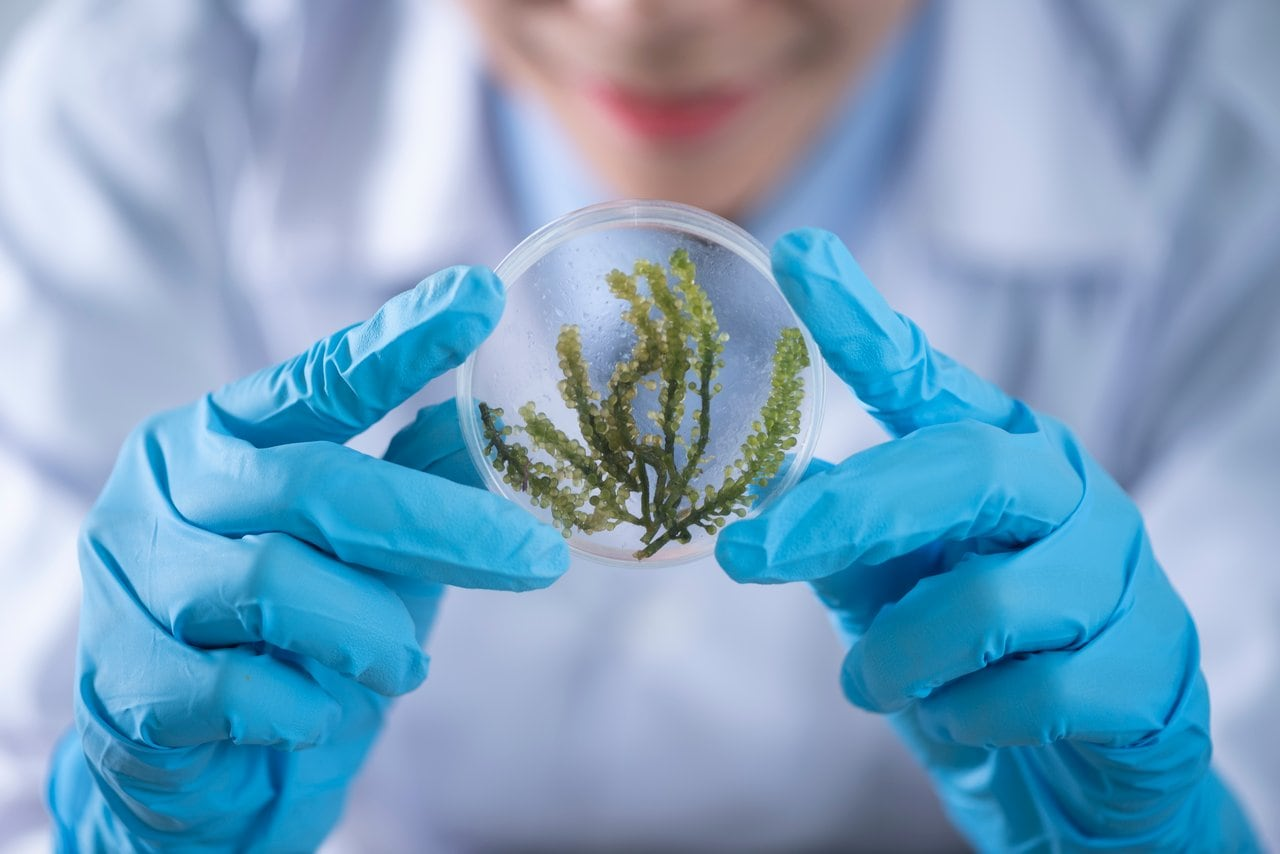 Pendidikan Biologi - Jurusan Favorit di UNNES dan Paling Banyak Peminat Universitas Negeri Semarang